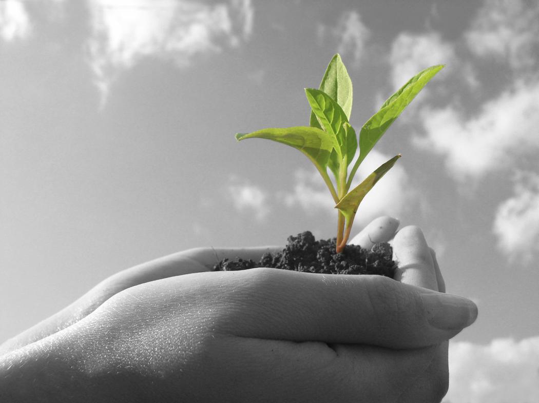 Sigla De Crecimiento Espiritual